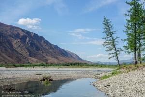 Полярное лето. Долина горной реки. 66 параллель