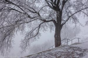 Туманная зарисовка