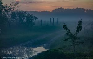 Целое поле тумана