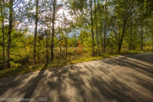 Солнце и тени от деревьев на дороге