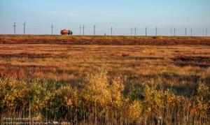Осенняя тундра. Дорога