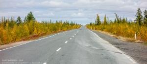 Дорога. Осень за полярным кругом