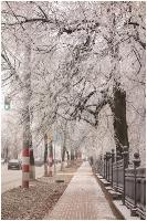 Парк Кулибина. Нижний Новгород