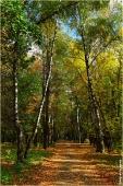 Автозаводский парк Нижнего Новгорода
