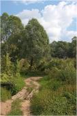 Деревянный мостик через ручей. Дорога в устье Клязьмы. Вертикальное фото