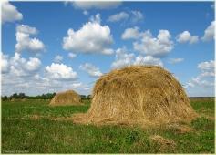 Стог сена на лугу. Большой стог. Самые красивые фото лета 2011