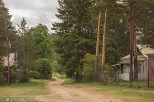 Затерянная в лесу деревня