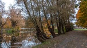 Болдинская осень. Верхний пруд. Плотина. Горбатый мостик
