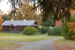 Фото еловой ветки на фоне Людской. Музей А.С.Пушкина