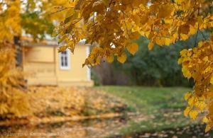 Болдинская осень. Господская кухня и верхний пруд