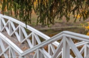 Болдинская осень. Горбатый мостик
