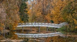 Болдинская осень. Верхний пруд. Горбатый мостик
