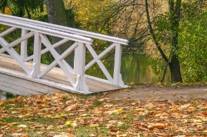 Горбатый мостик в усадьбе Пушкина