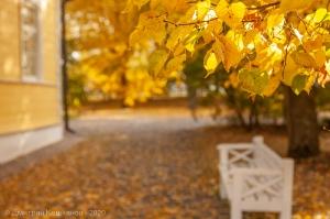 Болдинская осень. Фото с листьями на фоне усадьбы