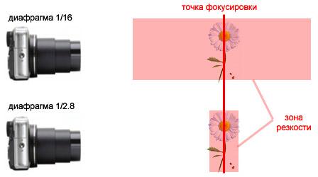 размытие фона на фотографии за счет раскрытия диафрагмы.